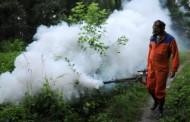 Zaprašivanje komaraca u Zvorniku od 4. jula do 8. jula