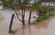 Rijeka Sapna juče poplavila 39 kuća