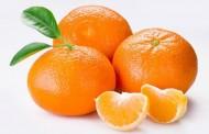 Ljekovita svojstva mandarina