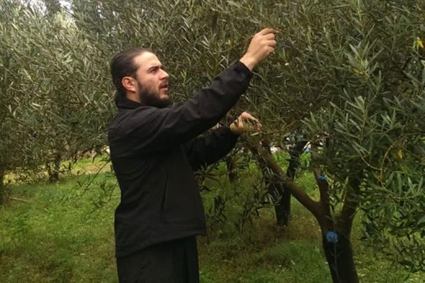 Monasi proizveli prvo maslinovo ulje u Srpskoj