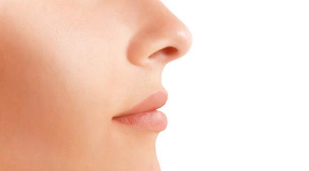 Čulo mirisa kao indikator dužine života