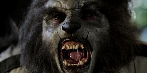 Photo of KOMŠIJE U STRAHU: Seljak iz Novog Sela iskopao glavu vukodlaka?!