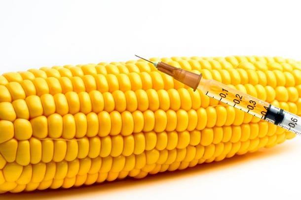 Photo of Na GMO pozitivno 67 odsto uzoraka!