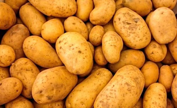 Photo of Devet toksičnih namirnica iz kuhinje, zbog kojih možete završiti u hitnoj