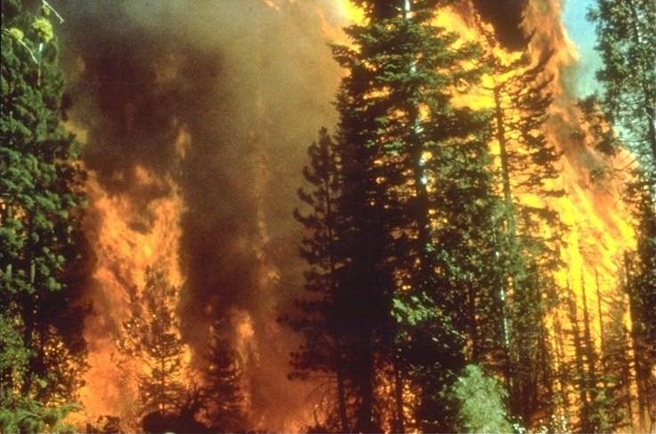 Photo of Ugašen požar na Bjelašnici