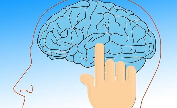 Je li vam mozak zdrav? Lagan test pomaže da to otkrijemo