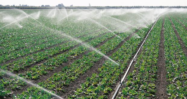 Padavine poboljšale vlažnost poljoprivrednog zemljišta