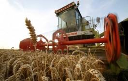 Uvoz uništava agrar RS