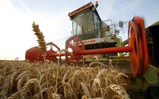 Photo of Udruženje mlinara RS: Otkupna cijena pšenice 0,33 KM