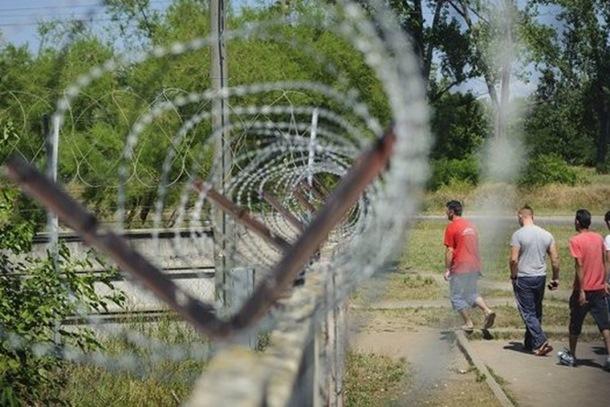 Pao mađarski zid: Migranti isjekli ogradu između Srbije i Mađarske
