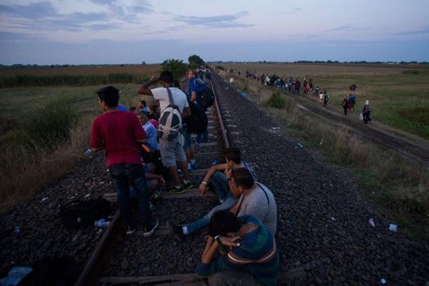 Photo of Na prevozu izbjeglica mjesečno zarađuju više hiljada evra