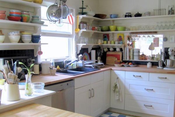 Savjeti iskusnih domaćica: kako da se riješite insekata u kuhinji