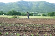 Anketiranje poljoprivrednih gazdinstava