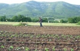 Bratunac: Počinje izgradnja sistema za navodnjavanje