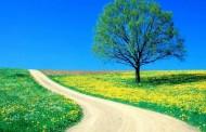 U nedjelju ljepše vrijeme, ali tek od četvrtka pravo proljeće