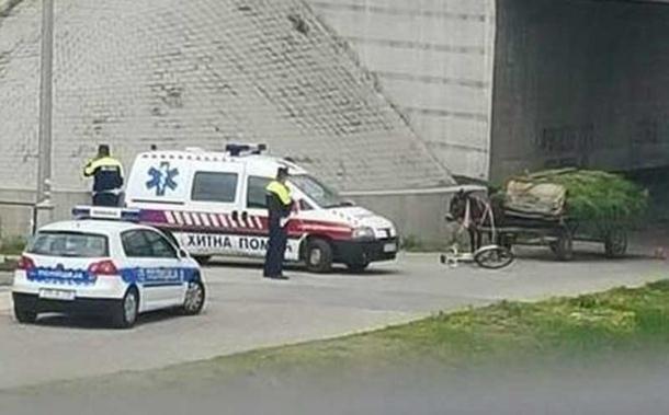 Photo of Nesvakidašnja saobraćajna nesreća u Bijeljini: Sudarili se magarac i biciklista
