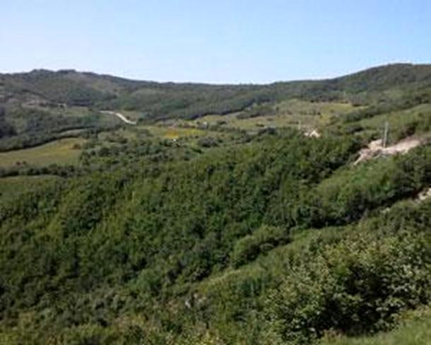 Otimanje srpske zemlje na Žuči