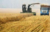 Rusija zaradila više od žita nego od oružja