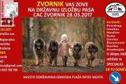 U Zvorniku druga izložba pasa CAC BiH Zvornik, prijavivanje u toku
