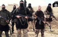 Kako namirisati buduće teroriste?