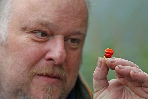 Velšanin uzgojio papriku koja može da ubije
