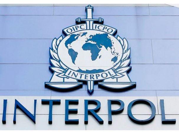 Interpol raspisao crvene potjernice za dvojicom Dobojlija