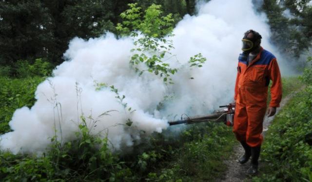 Uništavanje komaraca jutros odgođeno zbog lošeg vremena