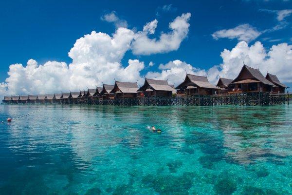 Photo of Poginulo desetoro kod ostrva Borneo