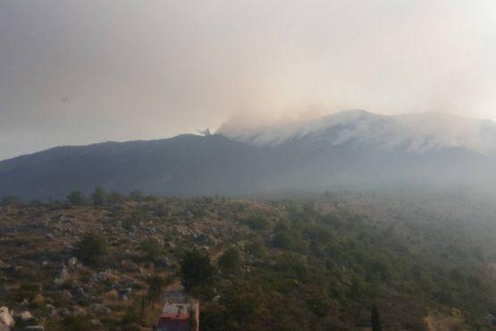 Žena osumnjičena da je izazvala sedam požara