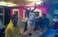 Banjaluka: Uveli konja u kafanu! (foto)