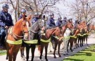 Policija u RS biće opremljena i konjima