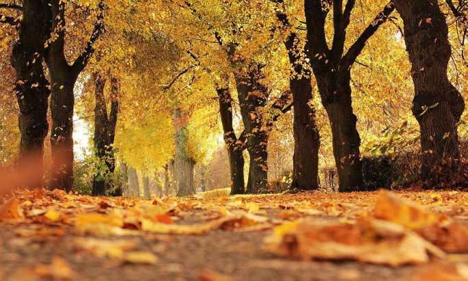 Stigla jesen
