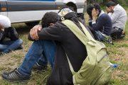 Zbog prevoza migranata Sarajlija u Tršiću lišen slobode