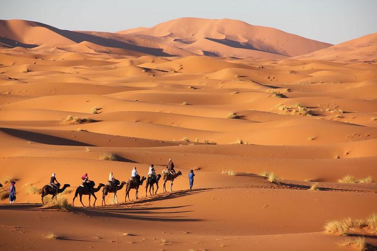 Photo of Naučnici pronašli način kako da Saharu učine plodnom