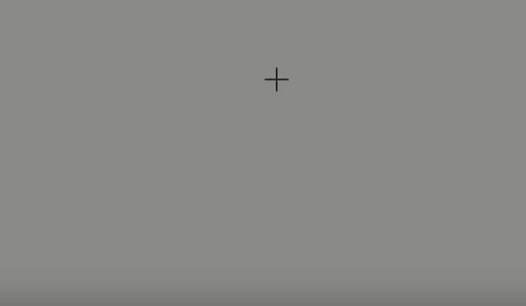 Ova iluzija će vaš mozak uvjeriti da vidi nešto čega nema (video)