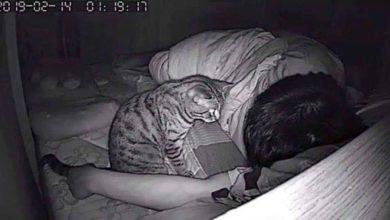 """Photo of Uznemirujuće otkriće: """"Nisam mogao disati u snu pa sam postavio kameru"""""""