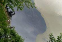 Photo of Na pomolu ekološka katastrofa na Zvorničkom jezeru?