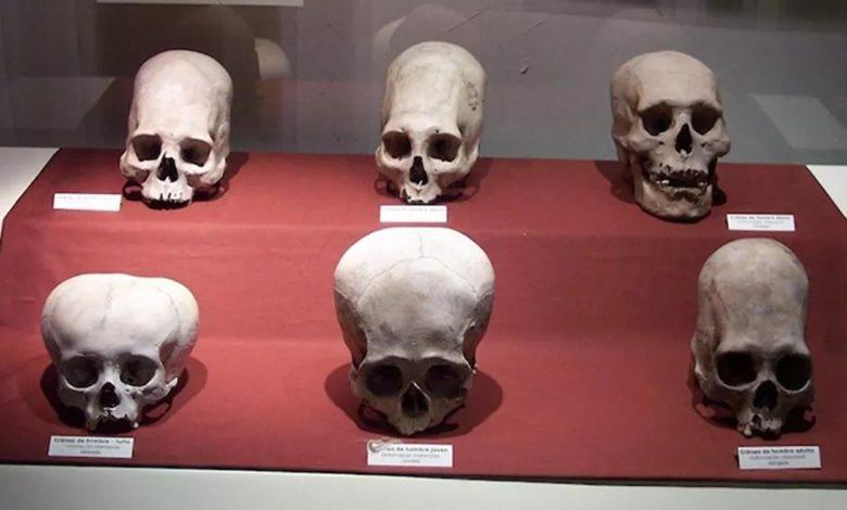 Photo of Riješena misterija neobičnih izduženih lobanja nađenih nedaleko od Srbije