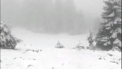 Photo of Na Vlašiću jutros osvanuo snijeg (video)