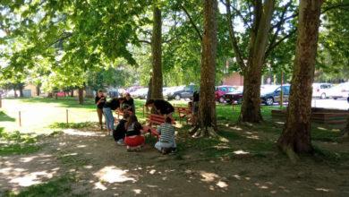 Photo of U Milićima mladi uređuju park