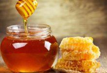 Photo of Zašto svaki dan treba pojesti bar jednu kašiku meda